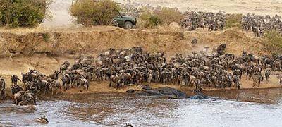 The Great Migration, Tanzania, Kenya